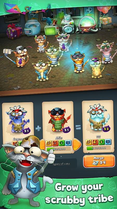 Cats Empire 4