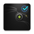 Kali Linux Pro