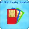 SIM Inquiry Numbers For Mobile