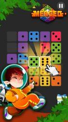 Dominoes Puzzle 4