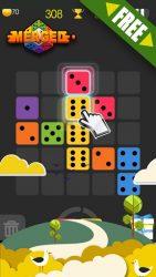 Dominoes Puzzle 2