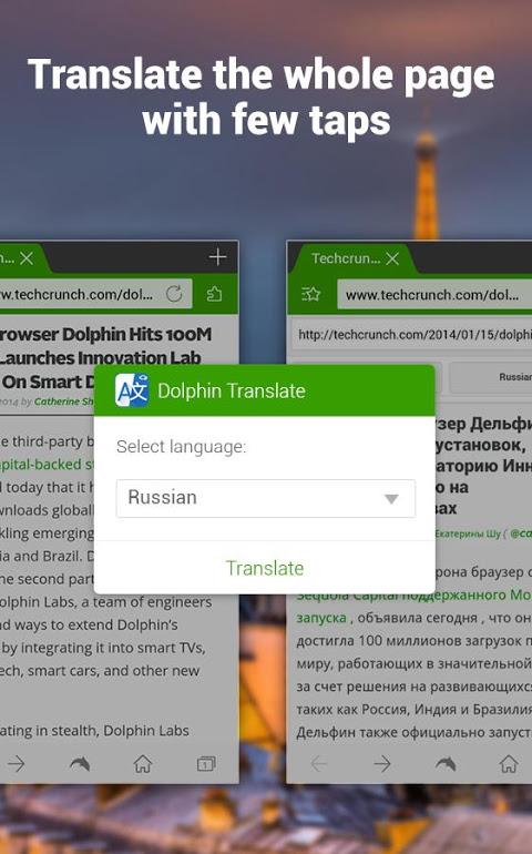 Dolphin | YeeCloud Translate 1