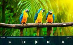 Full HD Video Player 4