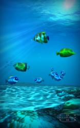 Ocean HD 1