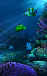 Ocean HD 3