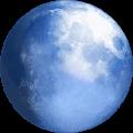 org.palemoon.android